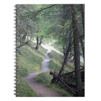 アルプスの方法 ノートブック