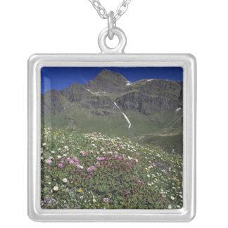 、アルプス咲いている、野生の花スイス連邦共和国 シルバープレートネックレス