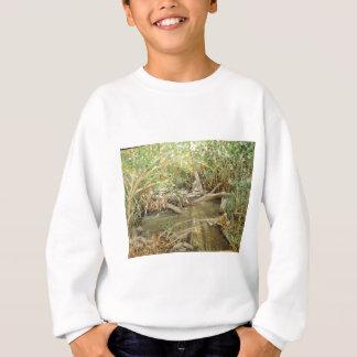 アルマの入り江の水彩画 スウェットシャツ