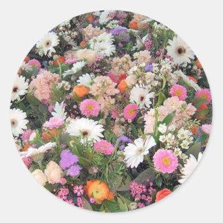アルマの開花1 ラウンドシール