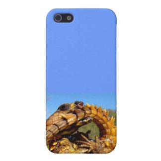 アルマジロのトカゲのIphoneの場合 iPhone 5 ケース