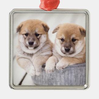 アルミニウムたらいの柴犬の子犬 メタルオーナメント