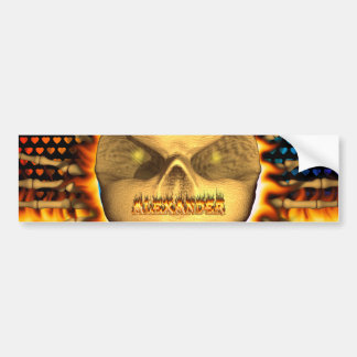 アレキサンダーのスカルの実質火および炎のバンパーのsticke バンパーステッカー