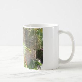 アロエの植物 コーヒーマグカップ