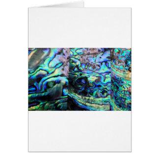 アワビのpauaの貝の詳細 カード