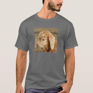 アンゴラのヤギの子供-大人の暗いTシャツ Tシャツ