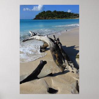 アンチグアのビーチポスター ポスター