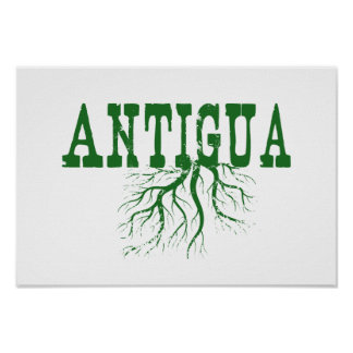 アンチグアの根 ポスター