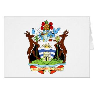アンチグアバーブーダの紋章付き外衣 カード