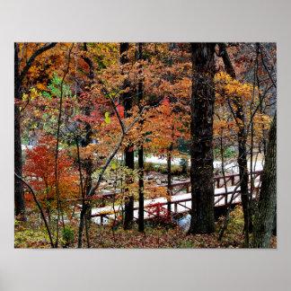 アーカンソーの価値ポスターの木の紅葉 ポスター