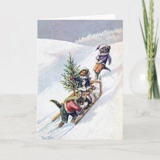 アーサー猫はクリスマスツリーを家に持って帰る
