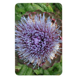 アーティチョークの花を開けて下さい。 紫色 マグネット