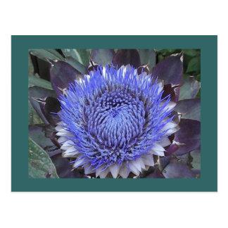 アーティチョークの開花の郵便はがき ポストカード