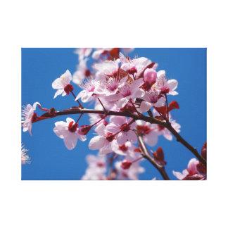 アーモンドの花のキャンバスのプリント キャンバスプリント