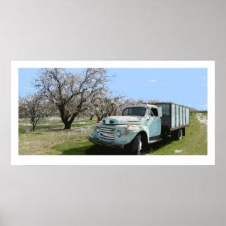 アーモンドの花のミーガンのトラック ポスター