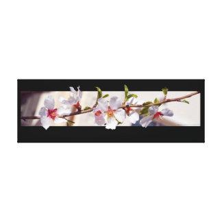 アーモンド木の花の花の包まれたなキャンバス キャンバスプリント