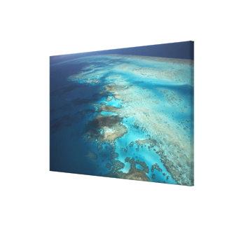 アーリントン礁、グレート・バリア・リーフの海洋公園、 キャンバスプリント