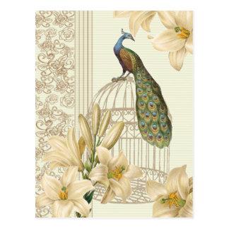 アールヌーボーフランスのなユリのヴィンテージの鳥かごの孔雀 ポストカード