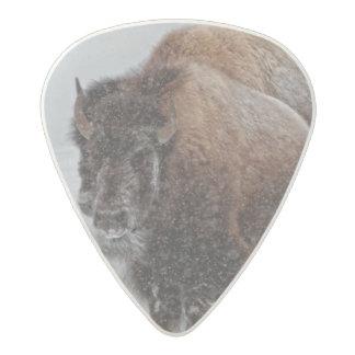 イエローストーンのバイソン アセタール ギターピック