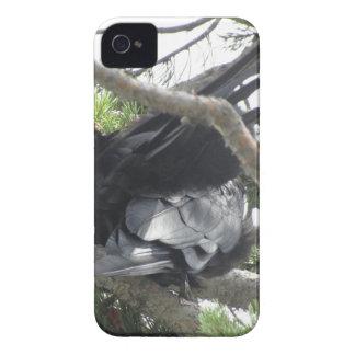 イエローストーンのワタリガラス、元の写真撮影 Case-Mate iPhone 4 ケース