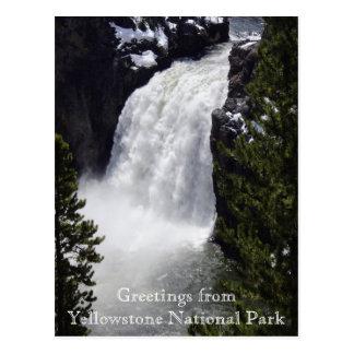 イエローストーン国立公園の郵便はがきからの挨拶 ポストカード