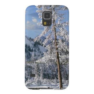 イエローストーン国立公園、ワイオミングの冬 GALAXY S5 ケース
