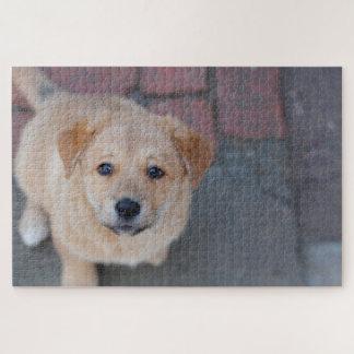 イエロー・ラブラドール・レトリーバーの子犬の写真 ジグソーパズル