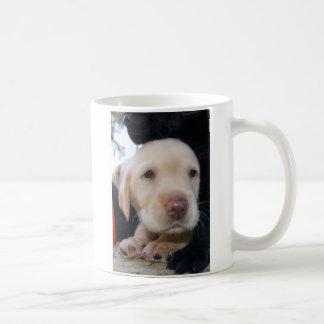 イエロー・ラブラドール・レトリーバーの子犬 コーヒーマグカップ