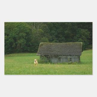 イエロー・ラブラドール・レトリーバーの農家 長方形シール