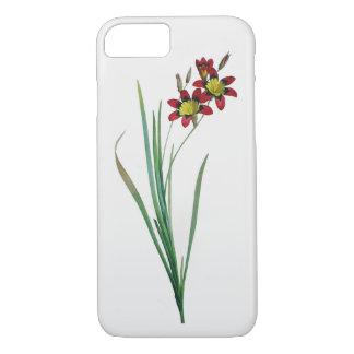 イキシアの三色のiPhone 7のやっとそこに箱 iPhone 8/7ケース