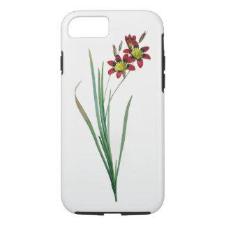 イキシアの三色のiPhone 7の堅い場合 iPhone 8/7ケース