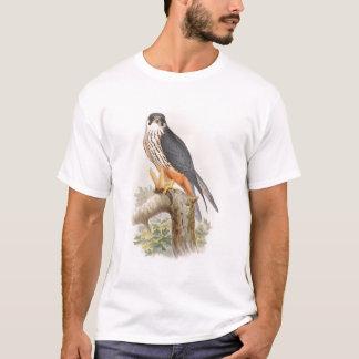 イギリスの趣味の《鳥》ハヤブサのジョンGouldの鳥 Tシャツ