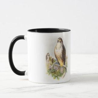 イギリスのBuzzardのジョン共通のGouldの鳥 マグカップ