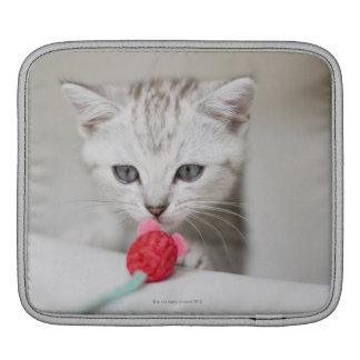 イギリスのshorthairの子ネコの臭いがするおもちゃのマウス iPadスリーブ