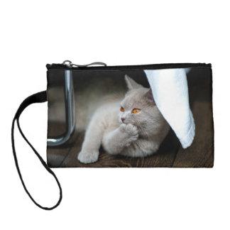 イギリス猫-おもしろいな猫-灰色猫 コインパース
