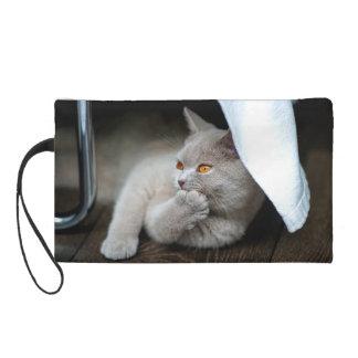 イギリス猫-おもしろいな猫-灰色猫 リストレット