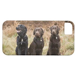 イギリス、イギリスのサフォーク、Thetfordの森林、ポートレート iPhone SE/5/5s ケース
