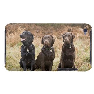 イギリス、イギリスのサフォーク、Thetfordの森林、ポートレート iPod Touch Case-Mate ケース