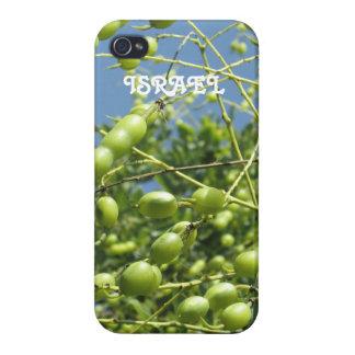 イスラエル共和国のオリーブ iPhone 4/4Sケース