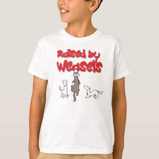 イタチによって上げられる Tシャツ