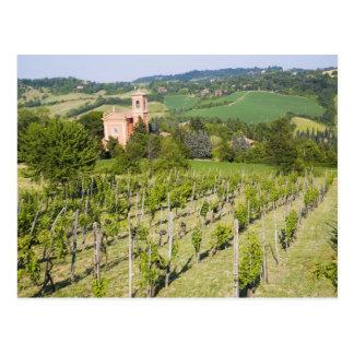 イタリアのボローニャ、Chiesaへのブドウ園を通した眺め ポストカード