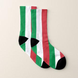 イタリアの旗が付いているプリントのソックスをくまなく ソックス