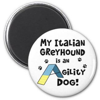 イタリアン・グレーハウンドの敏捷犬 マグネット
