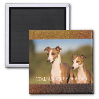 イタリアン・グレーハウンドの磁石 マグネット