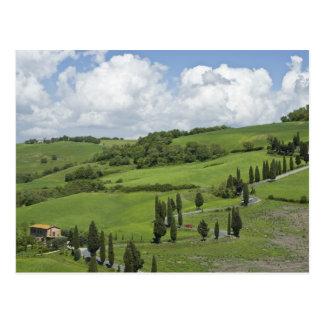 イタリア、タスカニー。 La Foce。 曲げられた道は終わります ポストカード