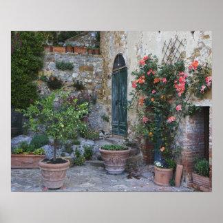 イタリア、Petroio。 鉢植えな植物はテラスを飾ります ポスター