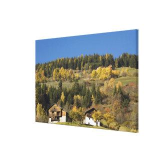 イタリア、Trentino - ALTOアディジェ川、ボルツァーノの地域、4 キャンバスプリント