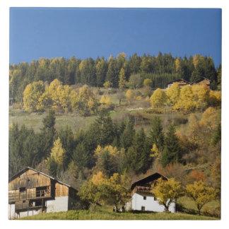 イタリア、Trentino - ALTOアディジェ川、ボルツァーノの地域、4 タイル