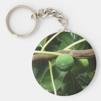 イチジクの木で熟す緑のイチジク キーホルダー