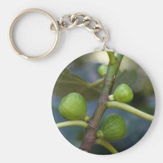 イチジク木の緑のフルーツ キーホルダー